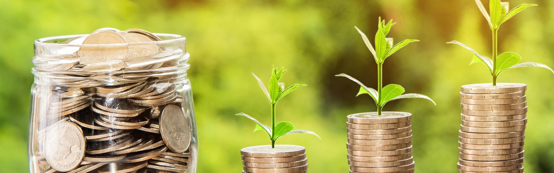 webinars green economy